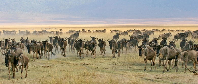 Great African Expedition - 9 Countries - Kenya to South Africa